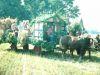 Erntedank1980_0014