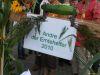 Erntedank2010_0036